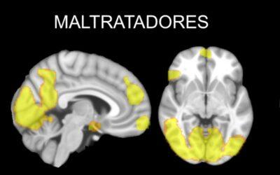 Estudian el cerebro de los maltratadores